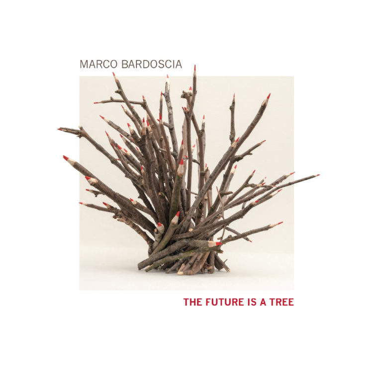 Marco Bardoscia, «The Future is a Tree», Tǔk Music 2020